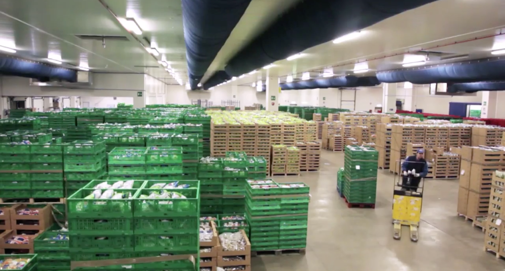 Cold storage for final fresh-cut product