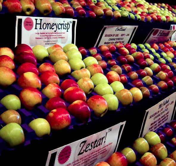 Branded apples in supermarket